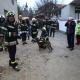 Potraga za zatrpanom osobom u Petrinji (Željko Lukunić)